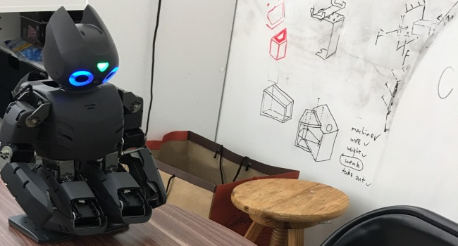 Virtual Reality Implementation of Darwin Robot